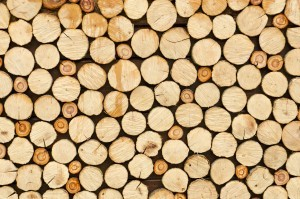 Timber Pricing in New Hampshire