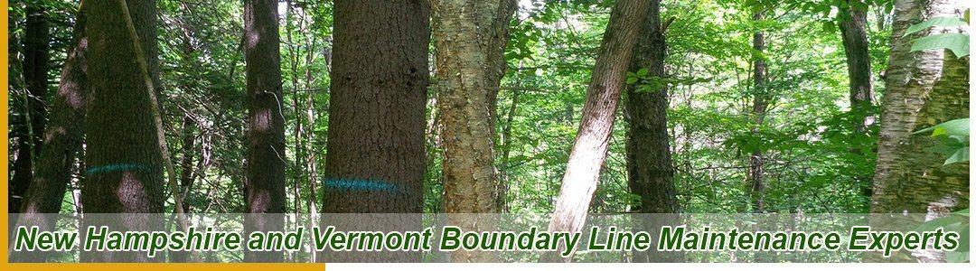 Boundary Line Maintenance