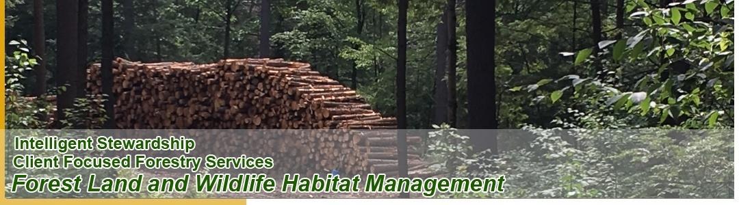 Forest Land and Wildlife Habitat Management
