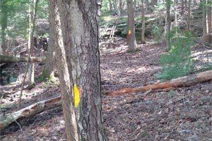 New Hampshire Boundary Line Maintenance, Vermont Boundary Line Maintenance
