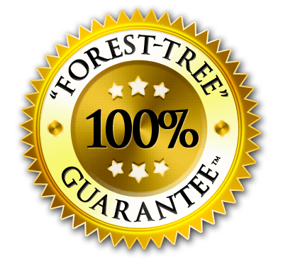 Forest-Tree Guarantee