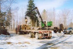 New Hampshire Timber Value Improvements, Vermont Timber Value Improvements