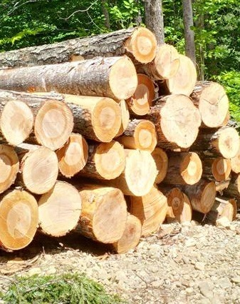 NH & VT Timber Prices -  Fall 2016