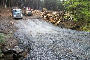 New Hampshire Timber Harvesting, Vermont Timber Harvesting