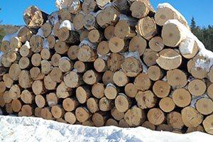 Timber Value Appraisals