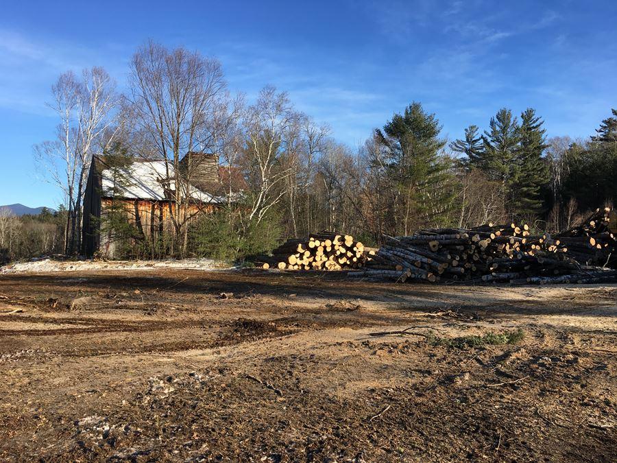 Campton, NH Timber Sale - Select Thinning